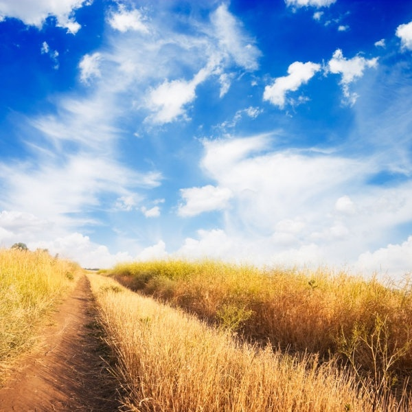Hd nature free stock photos download (21,342 Free stock photos) for