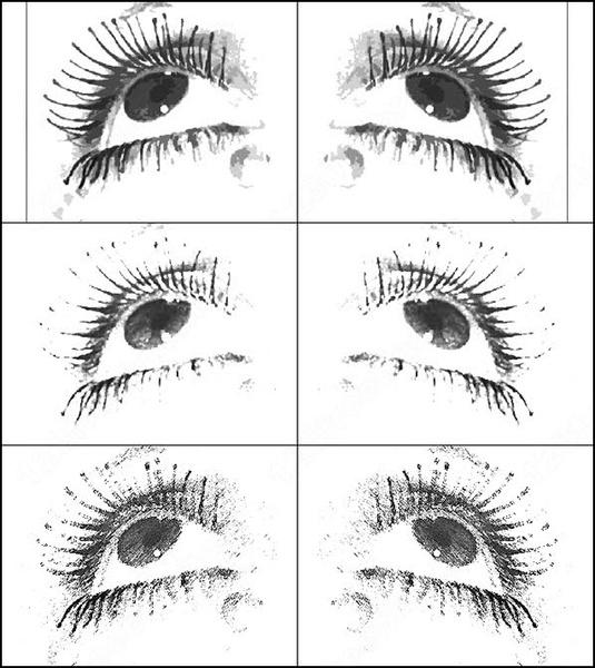 Eye hair photoshop brushes download (34 photoshop brushes) for