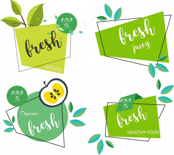 Fresh food tags templates green leaf flat shapes Free vector in