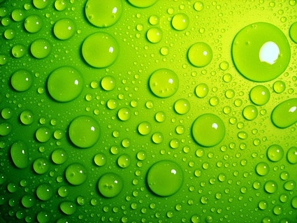Green water drops background picture Free stock photos in Image - water droplets background