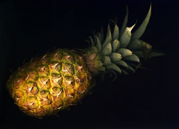 3d Colorful Heart Wallpapers Pineapple Free Stock Photos Download 119 Free Stock