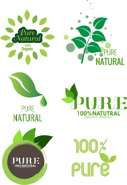 Pure product logo template green leaf design Free vector in Adobe