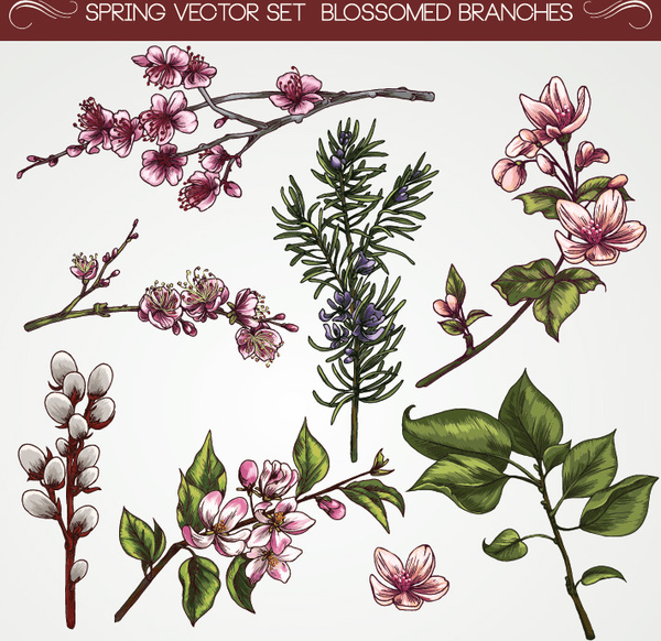 Fashion Cartoon Girl Wallpaper Vintage Flower Circle Free Vector Download 21 079 Free