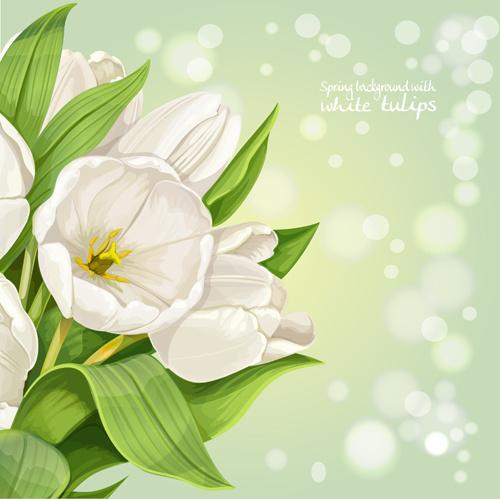 Single Rose Wallpaper Hd Bunga Tulip Free Vector Download 166 Free Vector For