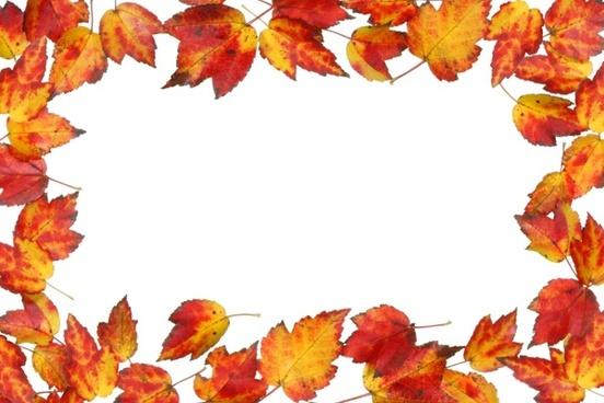 Fall leaf border free stock photos download (4,685 Free stock photos
