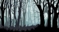 Forest free vector download (576 Free vector) for ...