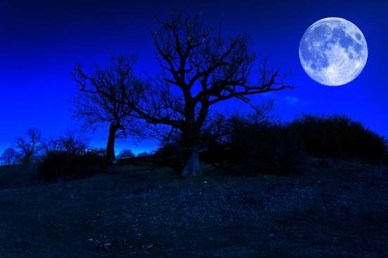 Moon night hd free stock photos download (5,318 Free stock photos