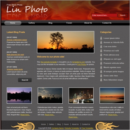 lin photo Free website templates in css, html, js format for free