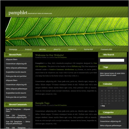 Pamphlet Free website templates in css, html, js format for free - free pamphlet
