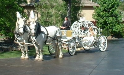 Vintage Carriage Company