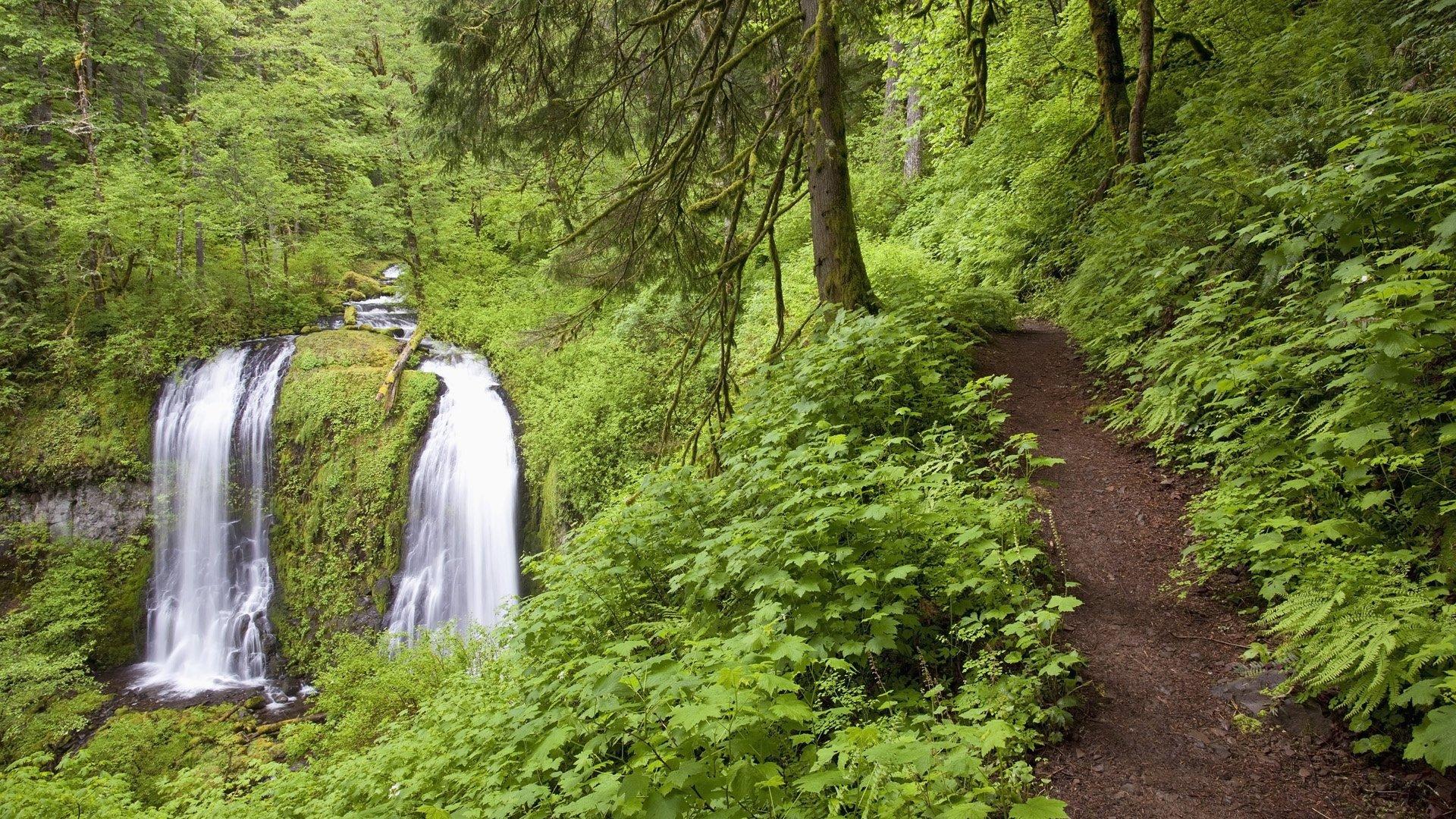 National Geographic Fall Wallpaper Upper Mccord Creek Falls Columbia River Gorge Oregon Usa