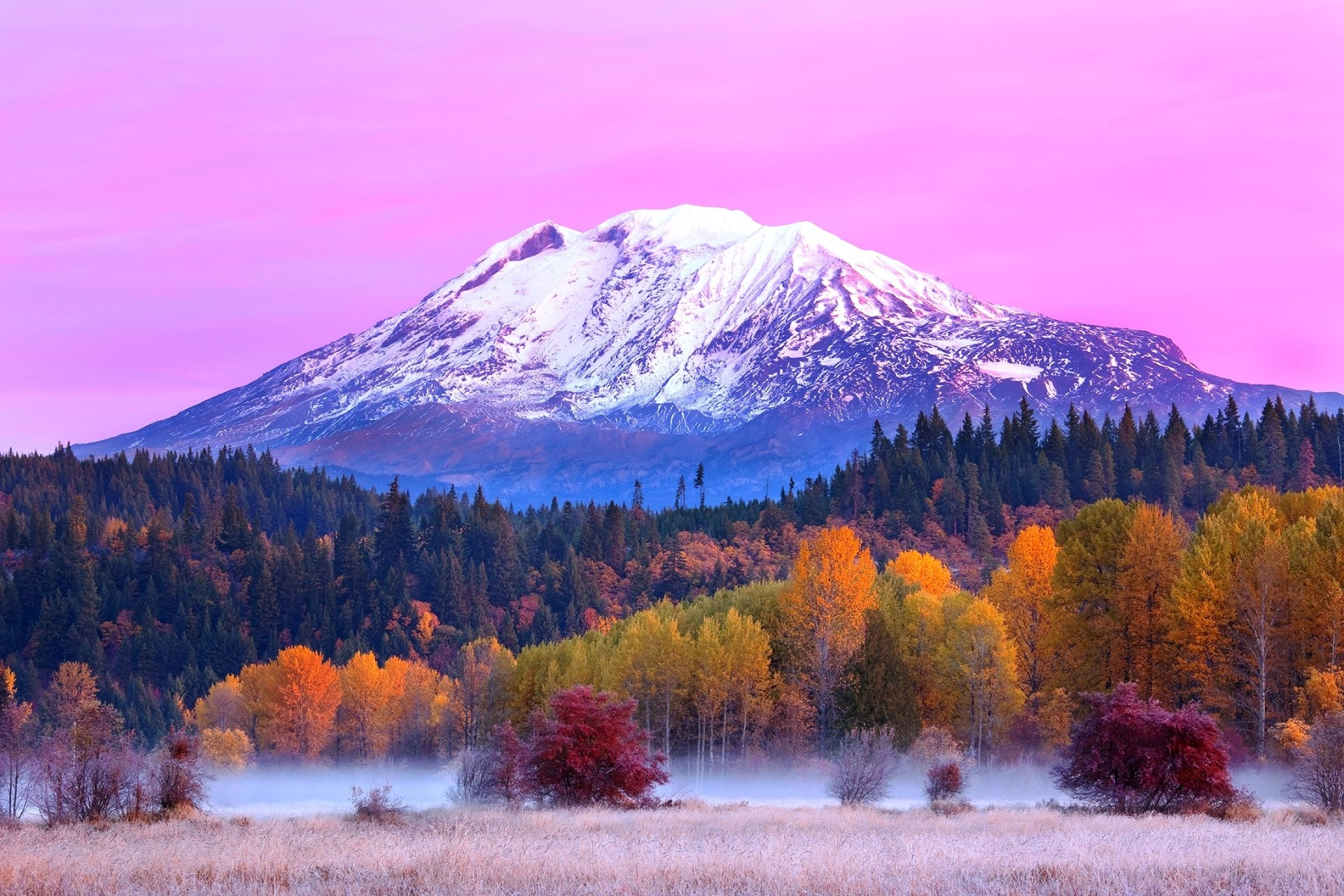 Fall Forest Hd Wallpaper Mount Adams Full Hd Wallpaper And Background Image