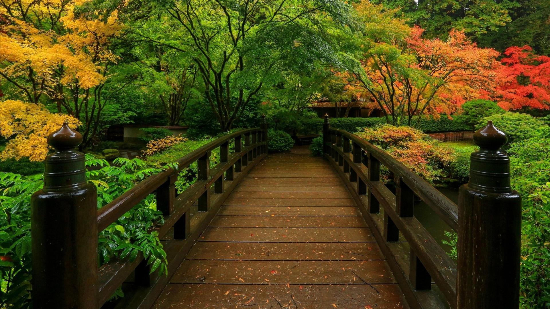 Fall Wallpaper Iphone 5 Bridge In Japanese Garden Hd Wallpaper Background Image