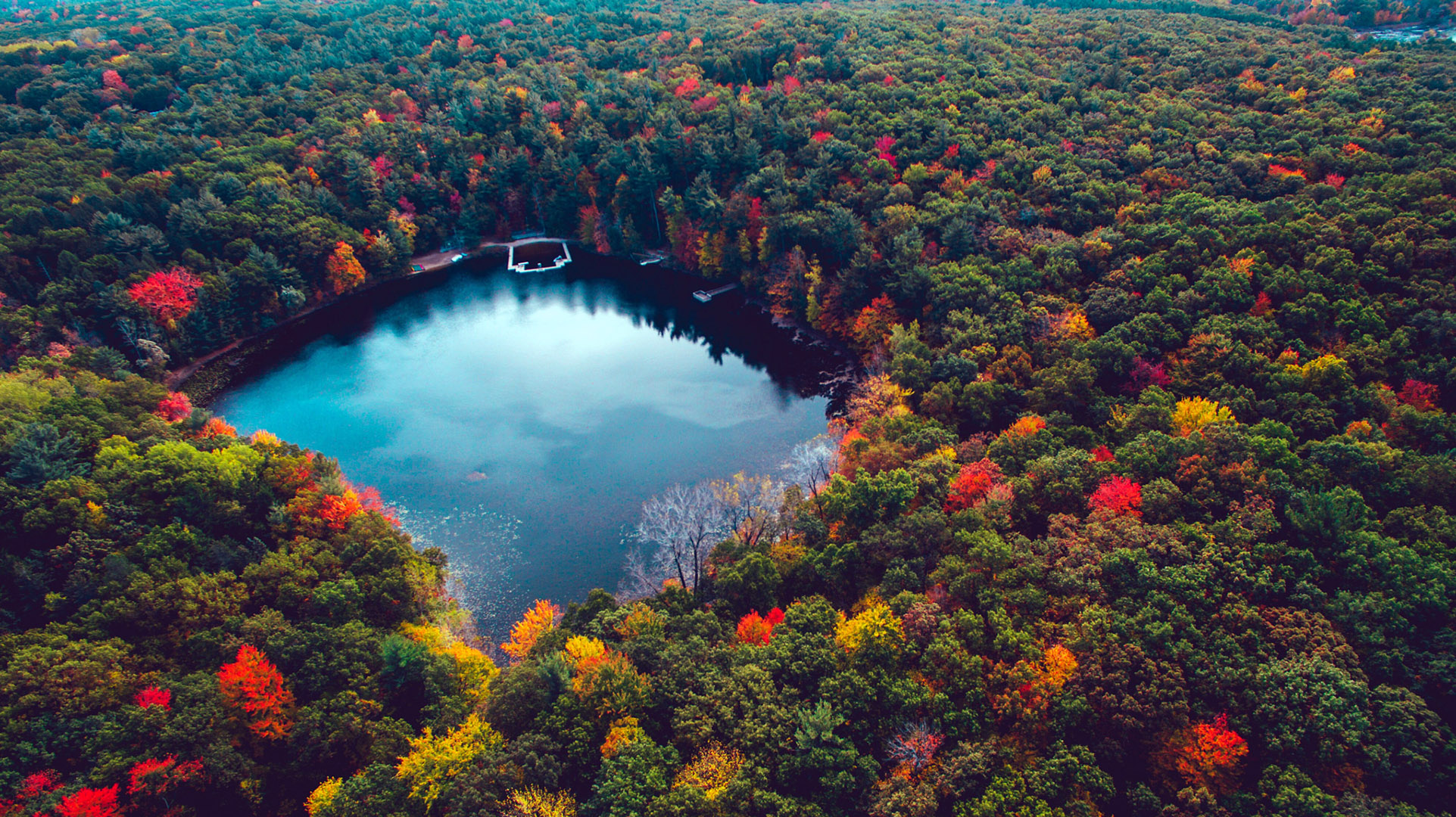Fall Foliage Wallpaper For Iphone Lake In Autumn Forest Hd Wallpaper Background Image
