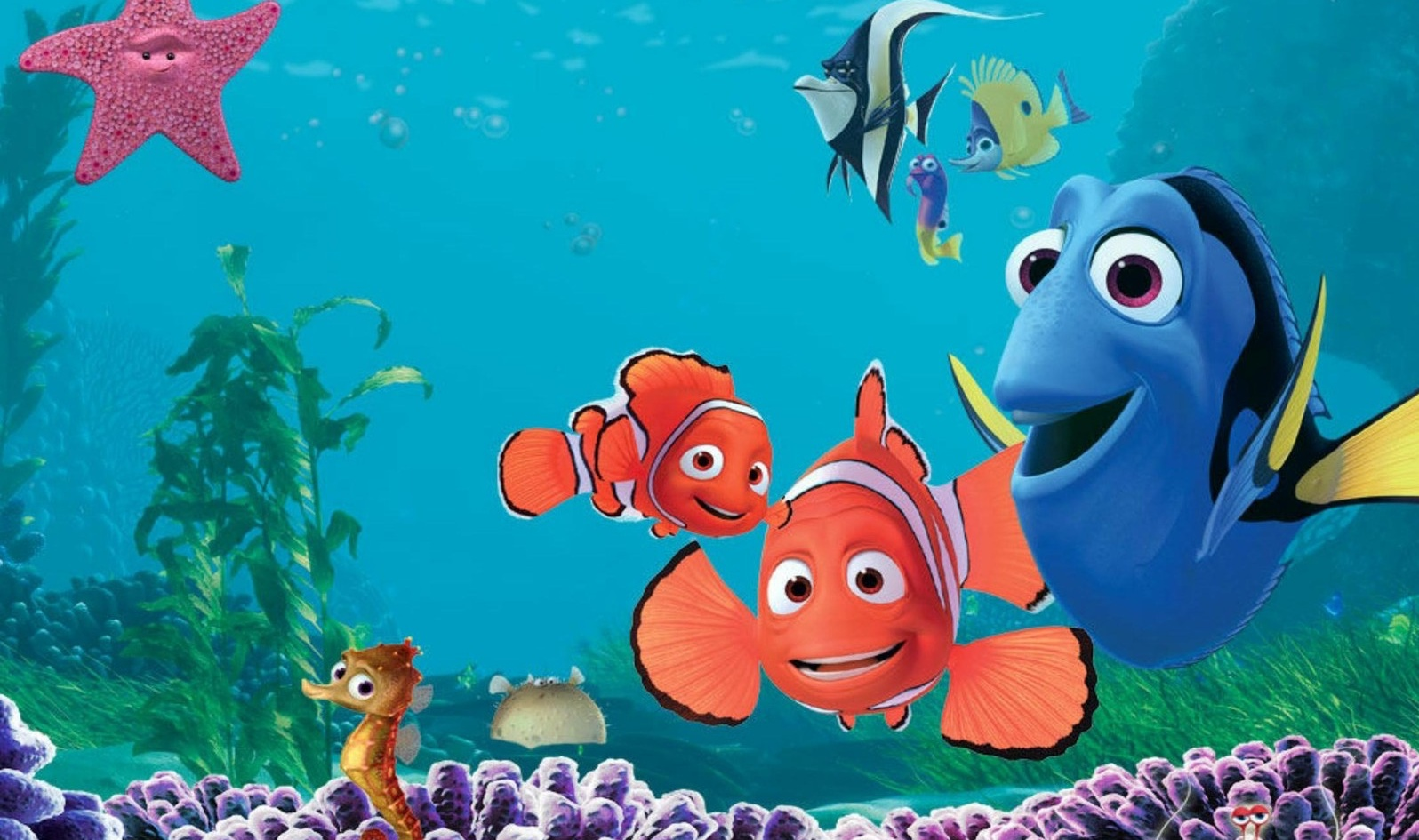 Hd Images Wallpaper Free Download Finding Nemo Wallpaper Free Download