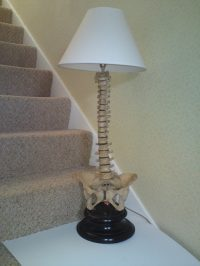 Antiques Atlas - 'MEDICAL' TABLE LAMP