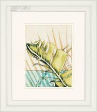 Melange Transitional Botanical Framed Wall Art (Set of 2 ...