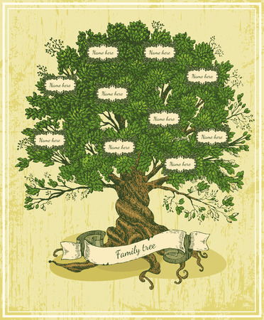 Genealogical tree on old paper background Family tree in vintage