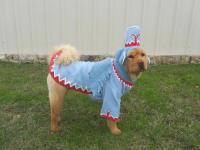 Winged Monkey Dog Costume