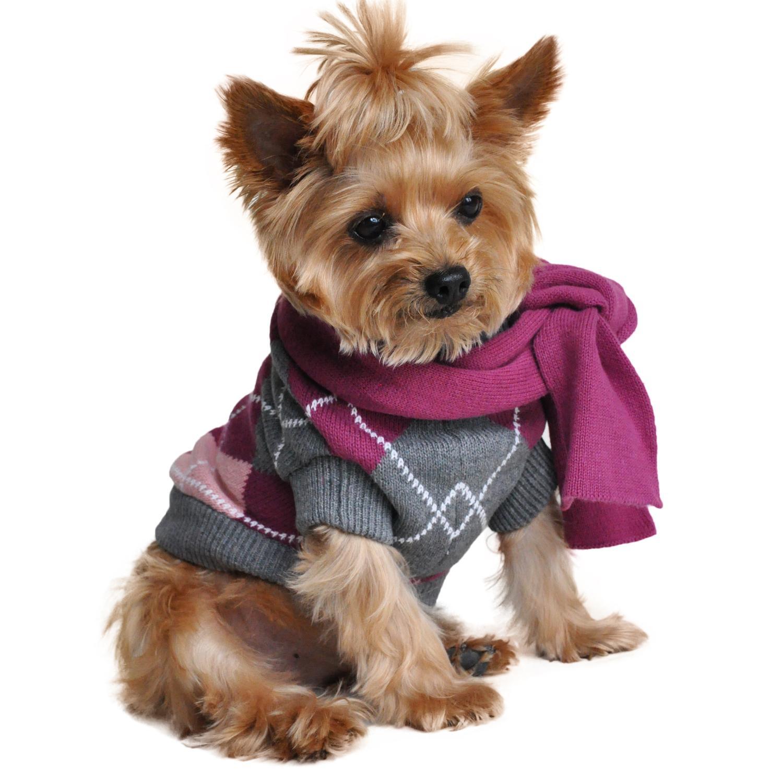 Argyle Purple Dog Sweater with Scarf by Doggi...