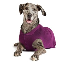 Gold Paw Fleece Dog Jacket - Eggplant | BaxterBoo