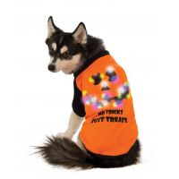 LED Halloween Dog T-Shirt by Rubie's Costumes | BaxterBoo