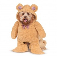 Walking Teddy Bear Dog Costume | BaxterBoo