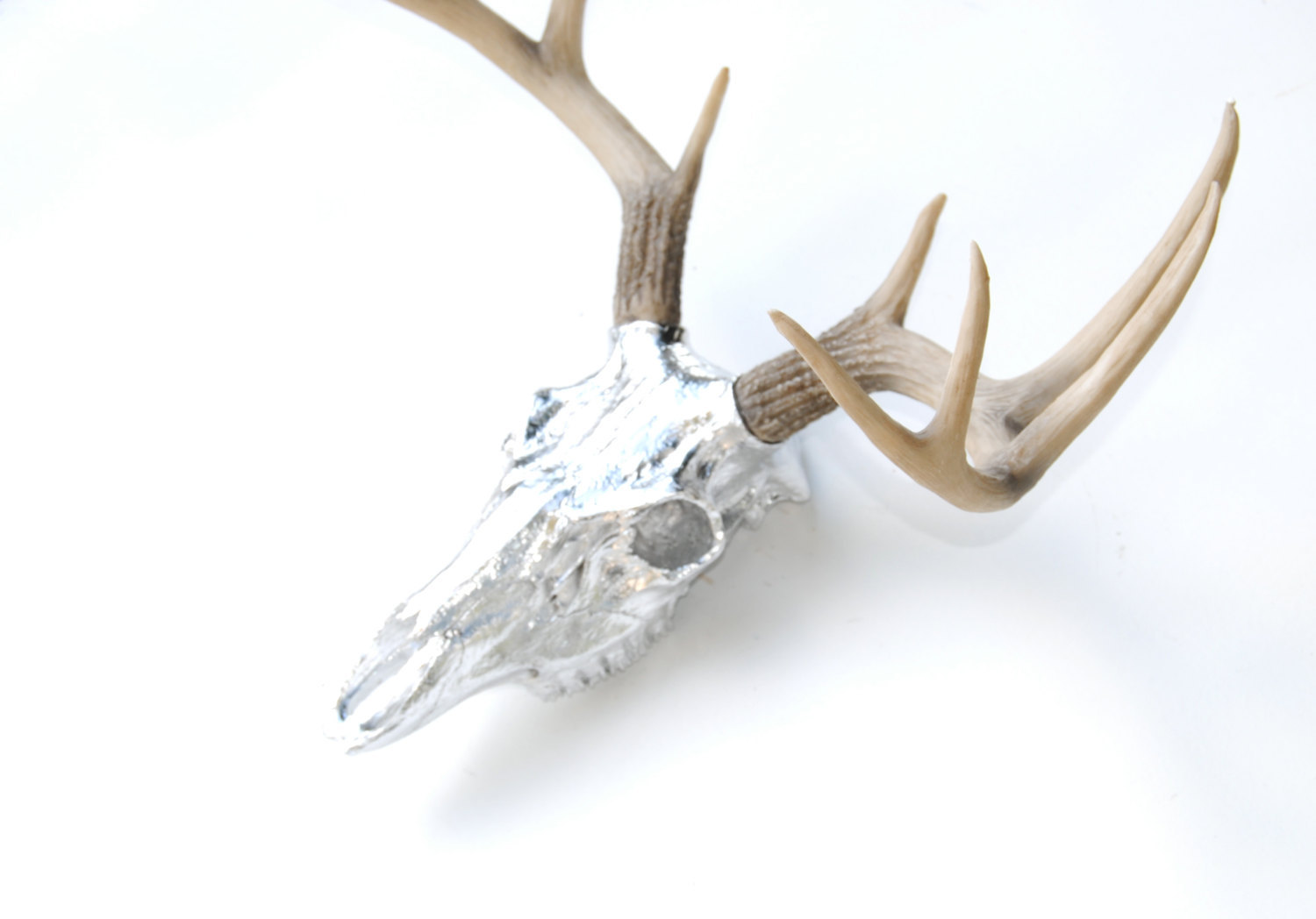 Fake Deer Skull And Antlers Faux Taxidermy Chrome Deer Skull Natural Antlers