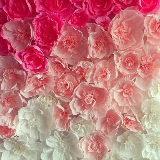 paper flower wall for sale