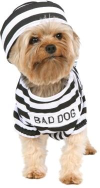 Prisoner Dog Costume Costumes, 34021