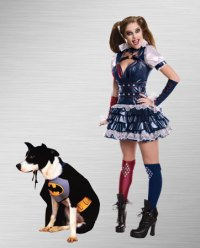 Harley Quinn Halloween Costumes | BuyCostumes.com