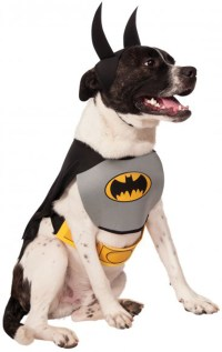 Batman Dog Costume | BuyCostumes.com