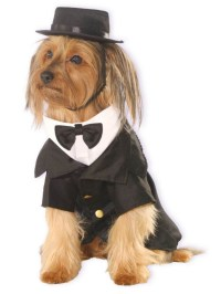 Dapper Dog Costume | BuyCostumes.com