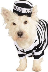 Prisoner Dog Pet Costume | BuyCostumes.com