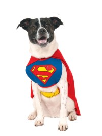 Superman Dog Costume | BuyCostumes.com