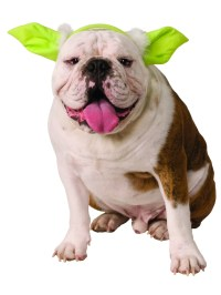 Yoda Dog Headpiece | BuyCostumes.com