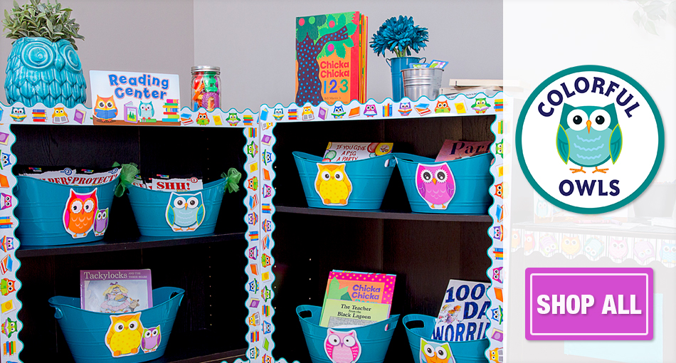 Colorful Owls Classroom Decorations Theme