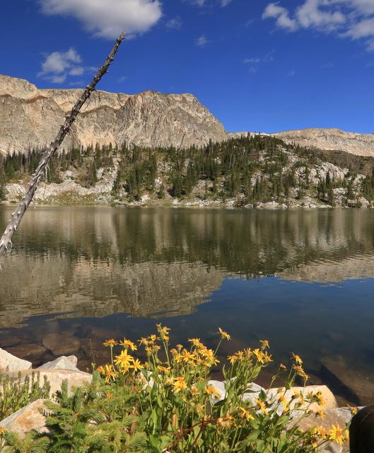 snowy-yelow-lake-reflection