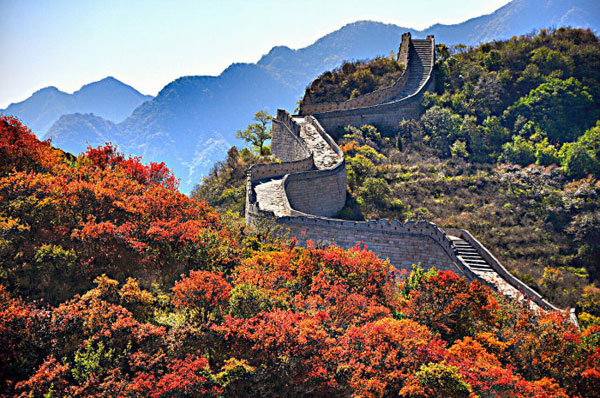 Wallpaper Falling Off Wall Badaling Great Wall Bursting With Autumn Colors China Org Cn