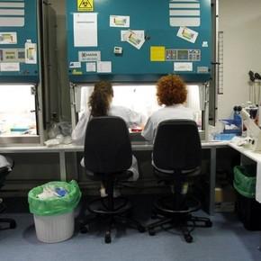 Logran eliminar el virus del VIH en seis pacientes a través del trasplante de células madre
