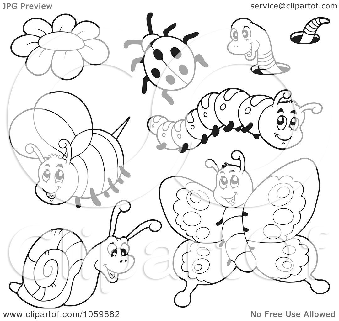 Of insects free coloring pages on art coloring pages -  Coloring Pages Insects Royalty Free Vector Clip Art Illustration Of A Download