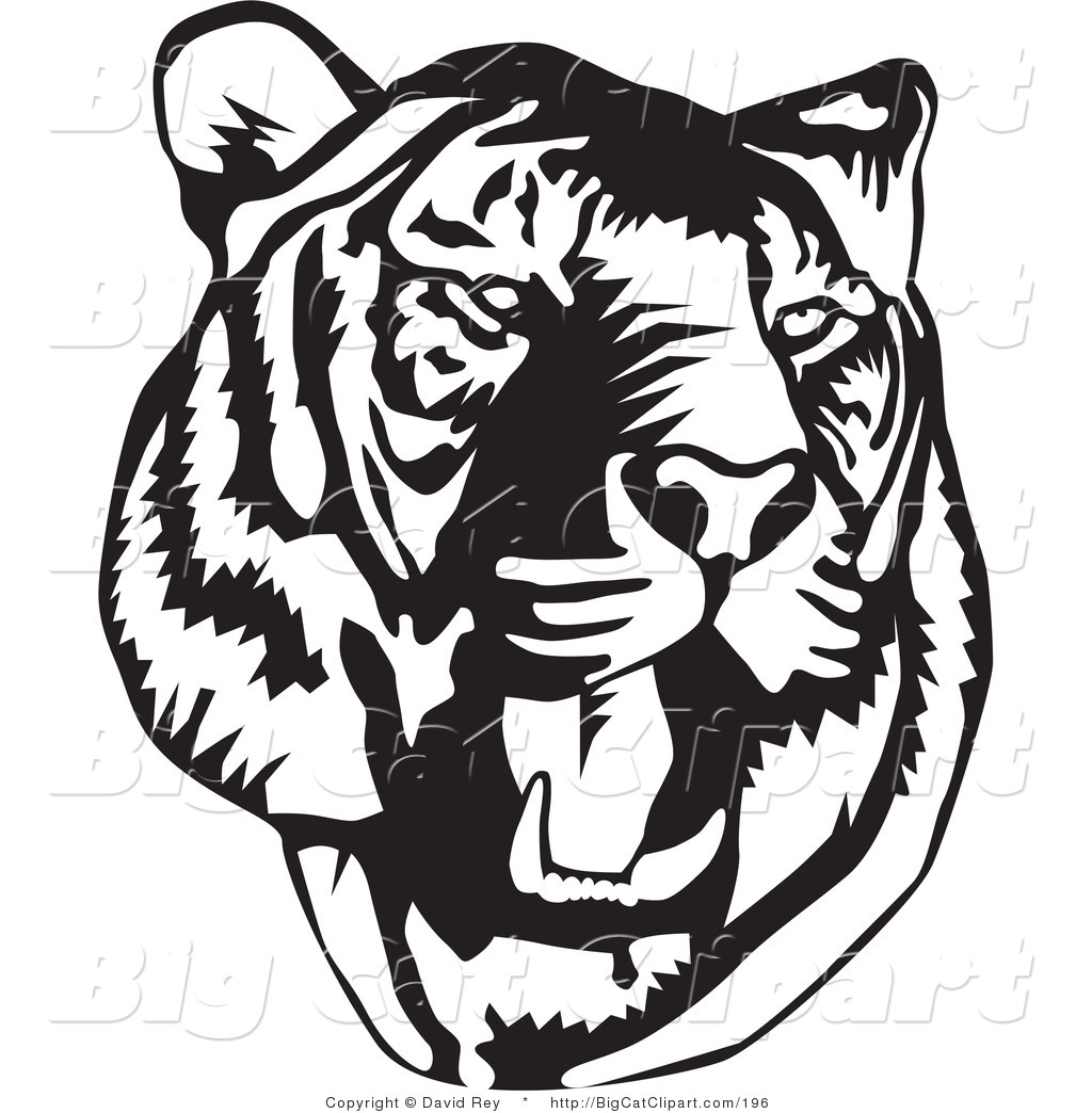 Roaring Lion Clip Art Black And White Tiger Face Clip Art Color Clipart Panda Free Clipart