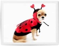 Ladybug Costume | Clipart Panda - Free Clipart Images