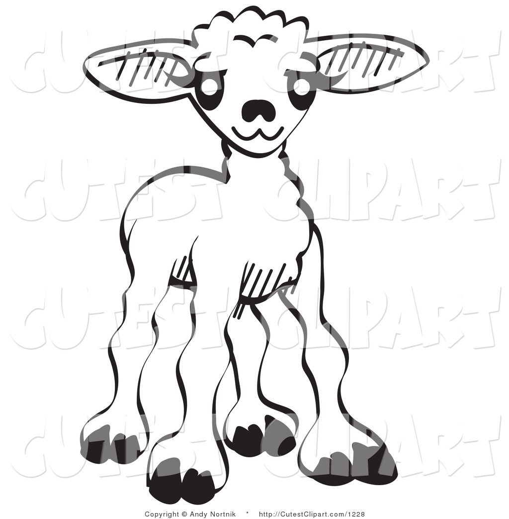 Baby Lamb Drawing Baby Sheep Clipart Clipart Panda Free Clipart Images