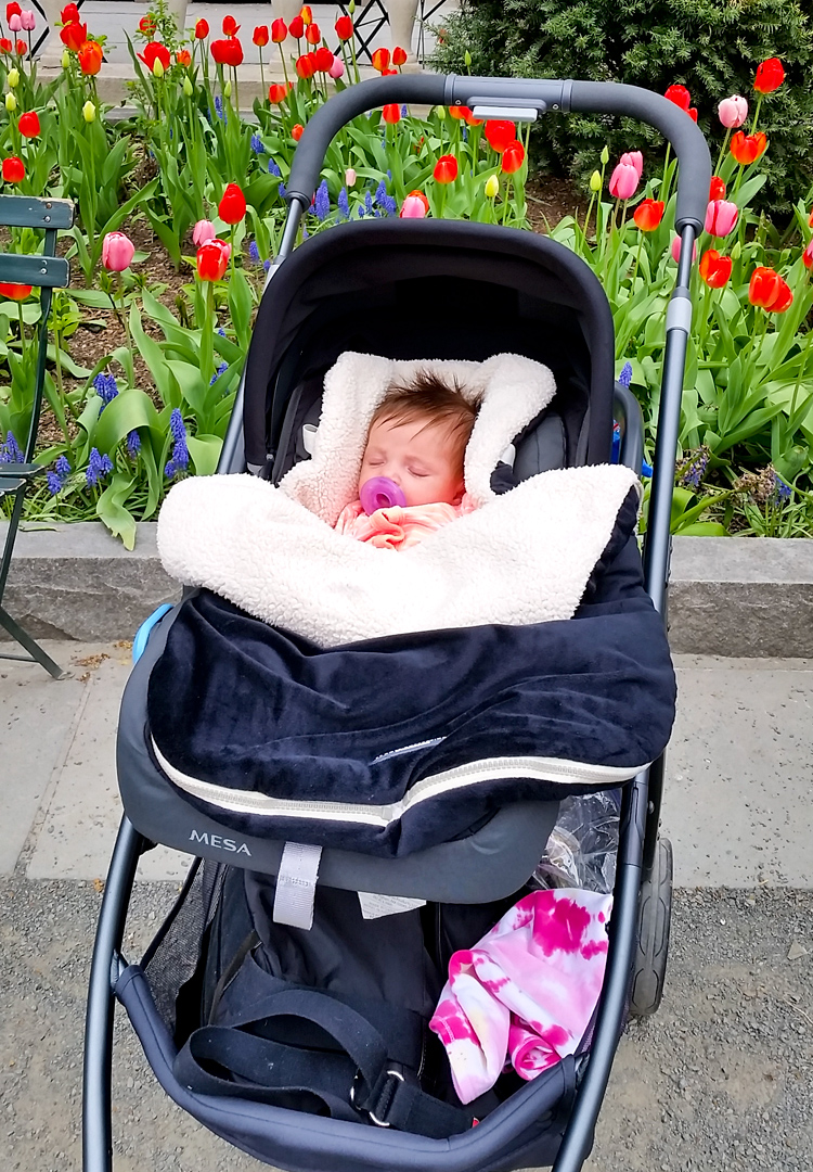 Stroller With The Bassinet Uppababy Cruz Stroller Review