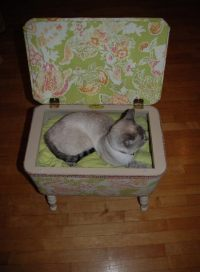 Homemade Cat(Or Dog) Bed  How To Make A Pet Bed ...