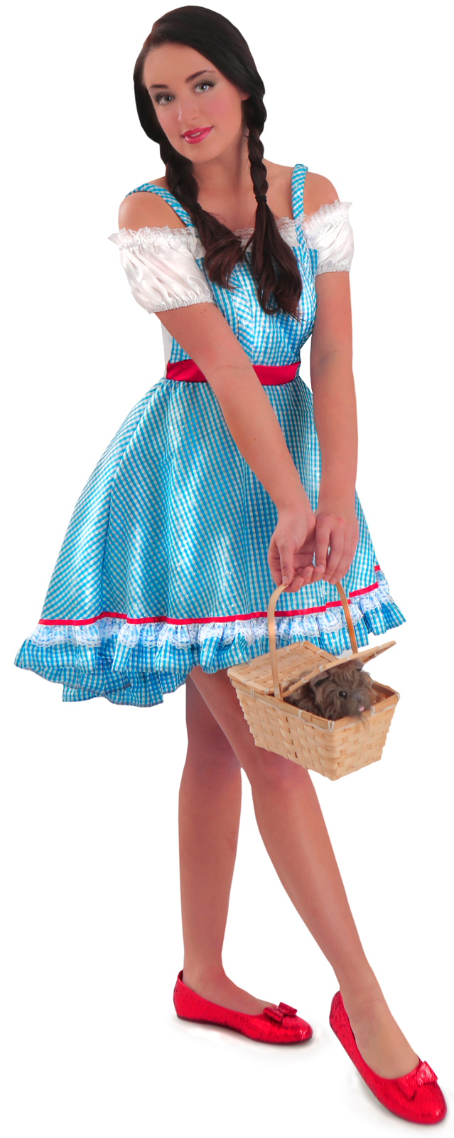 Results in halloween costumes adult wizard of oz dorothy costume