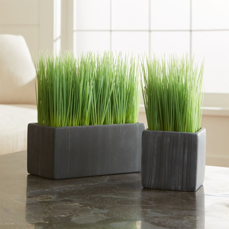 Badezimmer Deko Gold Potted Grasses | Crate And Barrel