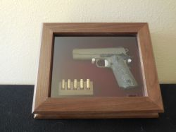 Small Of Gun Display Case