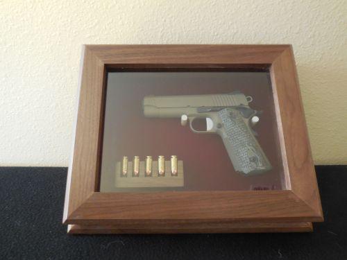 Medium Of Gun Display Case